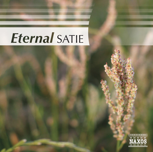 Satie (Eternal) Albumcover