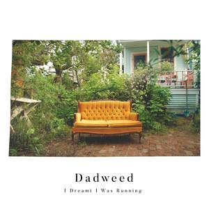 Dadweed