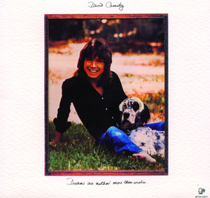 David Cassidy The Puppy Song cover