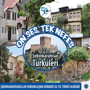 On Ses, Tek Nefes (Şebinkarahisar Türküleri)