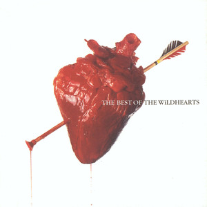 The Best Of The Wildhearts - Wildhearts