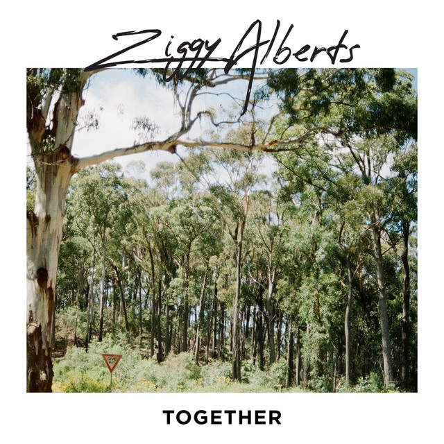 Image result for ziggy alberts together spotify