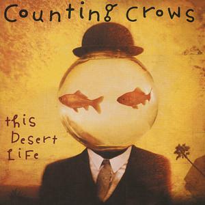 This Desert Life album