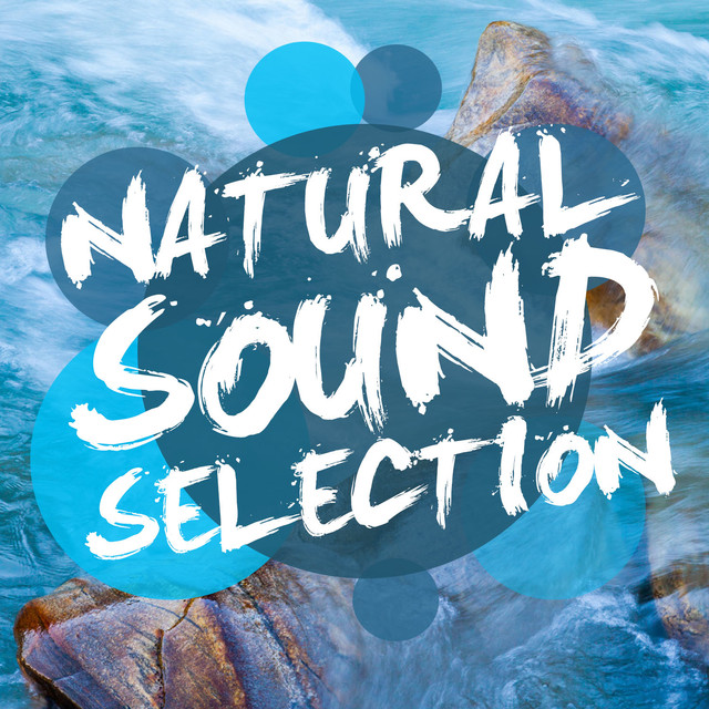 Natural Sound Selection Albumcover