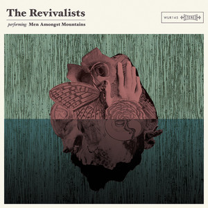 The Revivalists Wish I Knew You cover