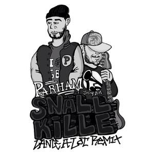 Snäll Kille (Lance-a-Lot Reggae Remix) Albümü