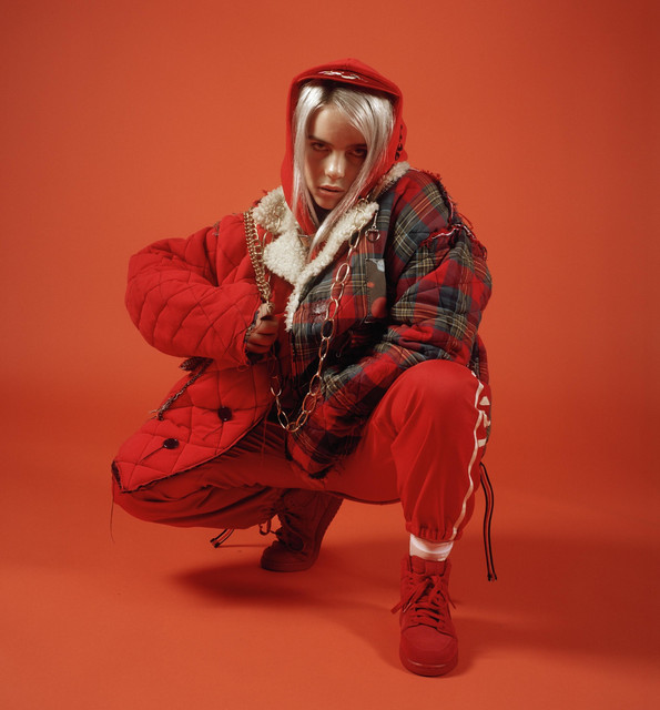 Billie Eilish tickets and 2019 tour dates