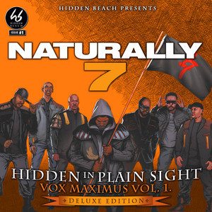 Hidden In Plain Sight (Vox Maximus Vol. 1: Deluxe Edition) album