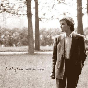 David Sylvian Weathered Wall cover