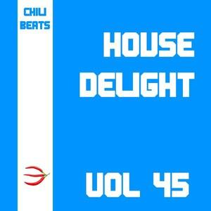 House Delight, Vol. 45 Albumcover
