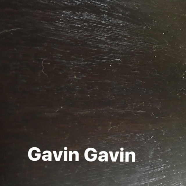 Album cover for Gavs Travs by Gavin Gavin