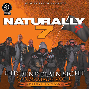 Hidden In Plain Sight (Deluxe)