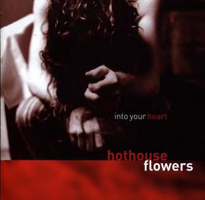 Into Your Heart album