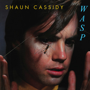 Wasp album