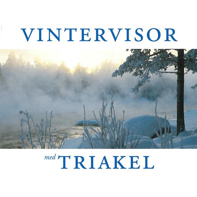"""Resultado de imagen de """"Vintervisor"""