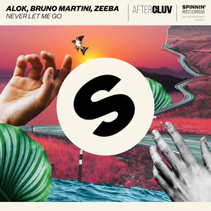Alok – Never let me go