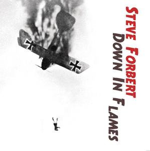 Down In Flames album