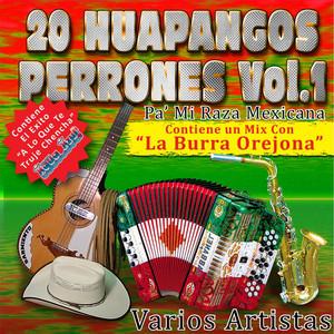 20 Huapangos Perrones, Vol. 1 Albumcover