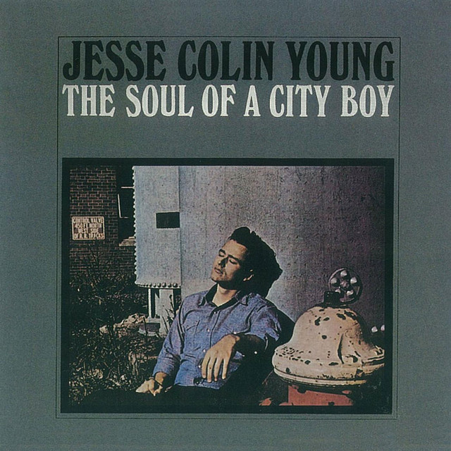 Jesse Colin Young The Soul of a City Boy album cover