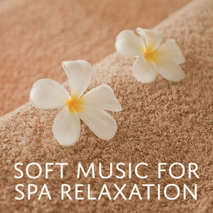 Soft Music for Spa Relaxation – Nature Music, Spa Massage, Relaxing Sounds, Sauna Time, Chill in Spa Albümü