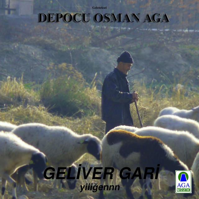 Geliver Gari
