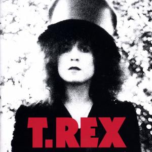 The Slider (Deluxe Edition) album