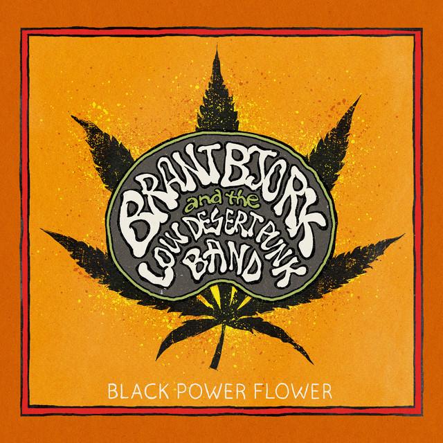 Brant Bjork and the Low Desert Punk Band