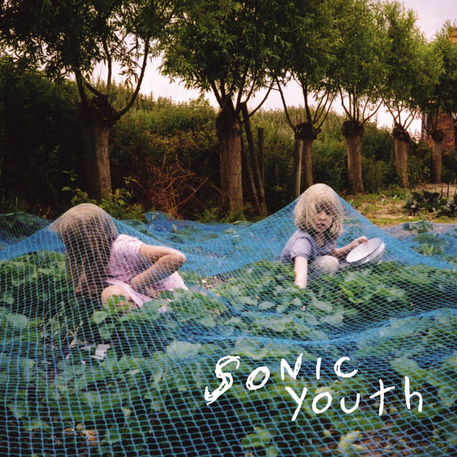 Album cover for Murray St. by Sonic Youth