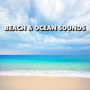 Beach & Ocean Sounds Albumcover