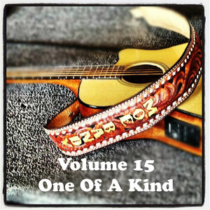 Volume 15 - One Of A Kind album