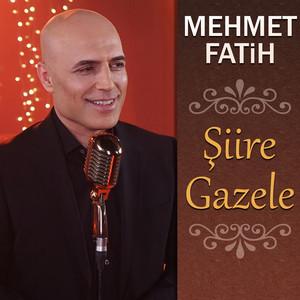 Şiire Gazele Albümü
