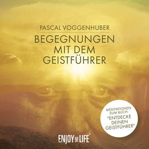 Begegnungen mit dem Geistführer Audiobook