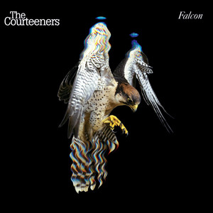 The Courteeners Sycophant cover