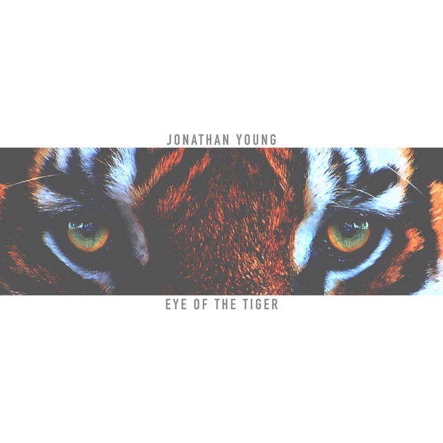 Eye Of The Tiger Pics eye of the tigerjonathan young on spotify