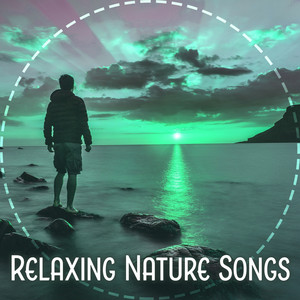 Relaxing Nature Songs – Best New Age Collection for Relax, Meditation, Sleep, Tranquility Music Albümü