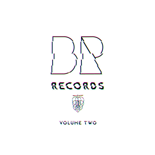 Image result for bike rack records volume 2