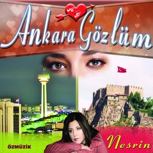 Ankara Gözlüm Albümü