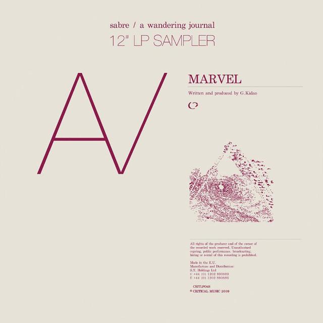 A Wondering Journal LP Sampler