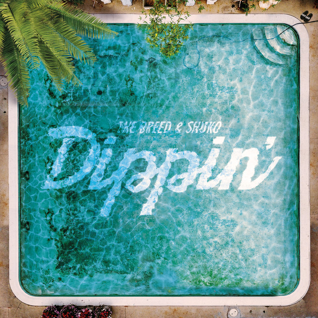 Album cover for Dippin' by Shuko, The Breed