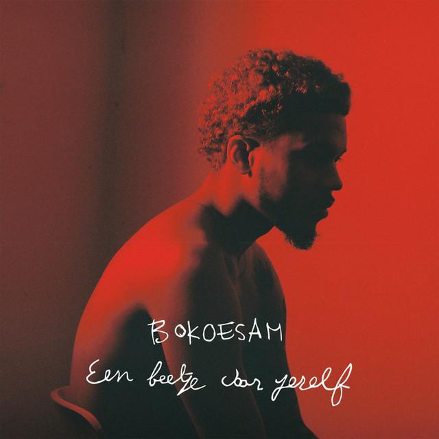 Album cover for Een Beetje Voor Jezelf by Bokoesam
