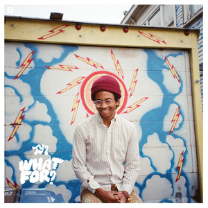 Album cover for What For? by Toro Y Moi