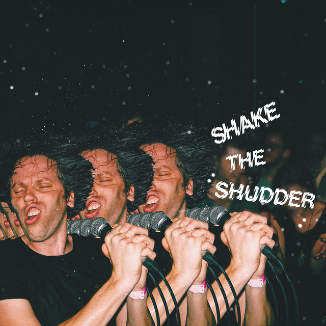 Album cover for Shake The Shudder by !!!