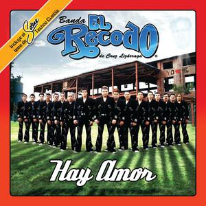Banda El Recodo Que Mas Quisiera cover
