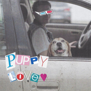 Puppy Love - This Wild Life