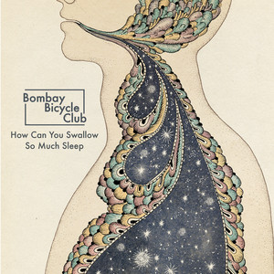 Album cover for how can you swallow so much sleep by Bombay Bicycle Club