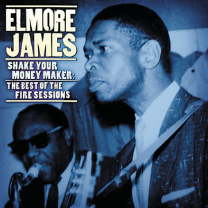 Album cover for Shake Your Money Maker: Best of the Fire Sessions by Elmore James