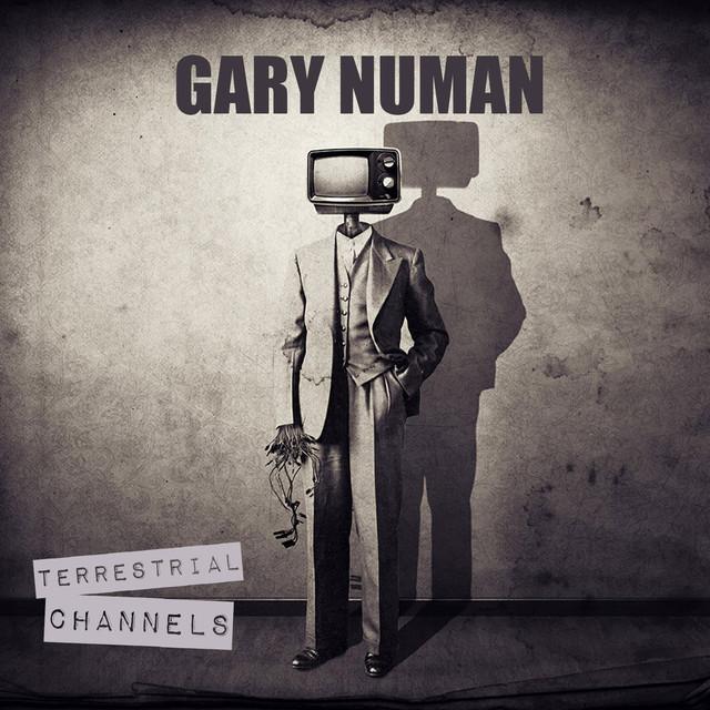 Terrestrial Channels