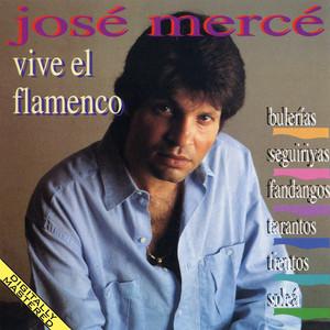 Vive El Flamenco: Bulerias - Seguiriyas - Fandangos - Tientos - Tangos album