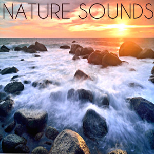 Calming Ocean Waves Albumcover