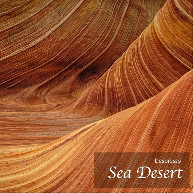 Album cover for Sea Desert by Despresso, Michael Tamada